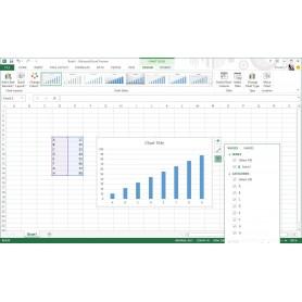 Microsoft office - Office famille et petite entreprise 2013 ...