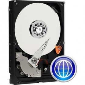 DISQUE DUR 1000GO SATA WESTERN DIGITAL BLUE
